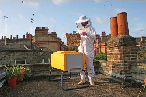 10greeninc.bees