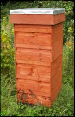 rose hive